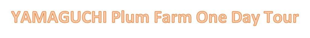 YAMAGUCHI PLUM FARM in English