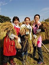 INTRODUCE YAMAGUCHI PLUM FARM